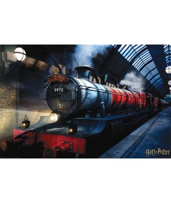 Harry Potter Maxi Poster -...